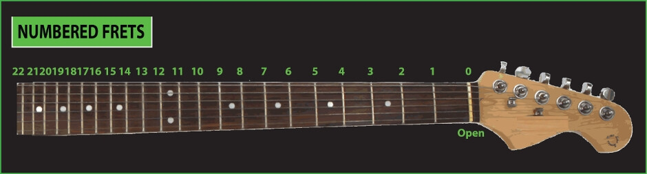guitar neck and fretboard